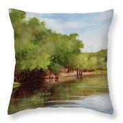 Satilla River Throw Pillow