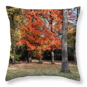 Saturday Here In The Park Throw Pillow