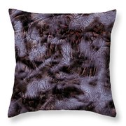 Satwtebr14ab Throw Pillow