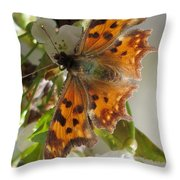 Satyr Comma Throw Pillow