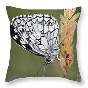 Satyr On The Grass Throw Pillow