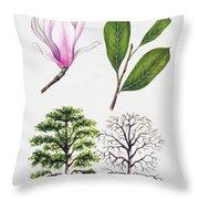 Saucer Magnolia Throw Pillow