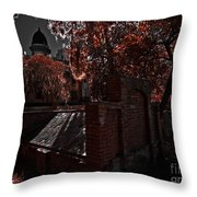 Savanna Georia Colonial Park Cemetery Color Infrared 500 Throw Pillow