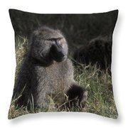 Savannah Olive Baboon  Throw Pillow