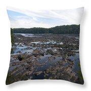 Savannah River At Evans Throw Pillow