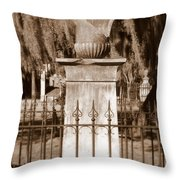 Savannah Sepia - Broken Throw Pillow