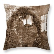 Savannah Sepia - Lovely Lamp Throw Pillow