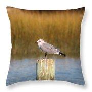 Savannah Shore Bird Throw Pillow
