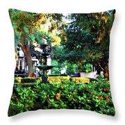 Savannah Square Throw Pillow