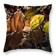 Sawbrier Or Greenbriar In The Fall Throw Pillow