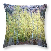 Sawtooth National Forest 2 Throw Pillow
