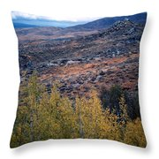 Sawtooth National Forest 1 Throw Pillow