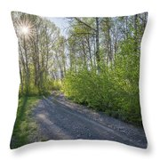 Sawtooth Road Throw Pillow