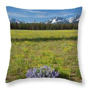 Sawtooths And Wildflowers Throw Pillow