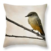 Say's Phoebe  Throw Pillow