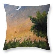 Sc Sunset  Throw Pillow