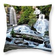 Sc Twin Falls Throw Pillow