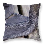 Scaly Canadian Goose Foot - No1 Throw Pillow