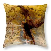 Scar Of Cordoba Throw Pillow