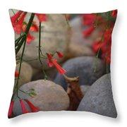 Scarlet Bugler Blossoms On Rocks Throw Pillow