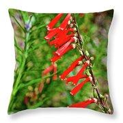 Scarlet Bugler In Rancho Santa Ana Botanic Garden In Claremont-californi Throw Pillow