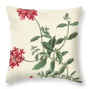 Scarlet Flowered Vervain Throw Pillow