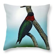 Scarlet Gorget - Ruby-throated Hummingbird Throw Pillow