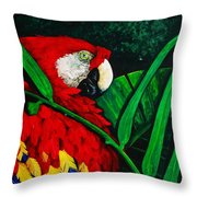 Scarlet Macaw Head Study Throw Pillow