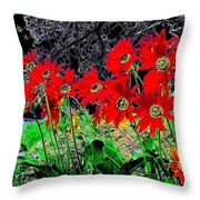 Scarlet Night Throw Pillow