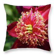 Scarlet Peony Throw Pillow