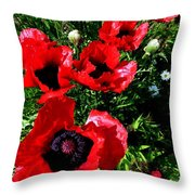 Scarlet Poppies Throw Pillow