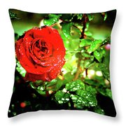 Scarlet Raindrops Throw Pillow
