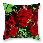 Scarlet Snapdragons At Pilgrim Place In Claremont-california  Throw Pillow