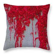 Scarlet Squiggle Throw Pillow