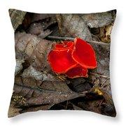 Scarlet Underfoot Throw Pillow