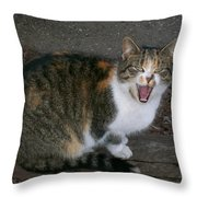 Scary Kitty Throw Pillow