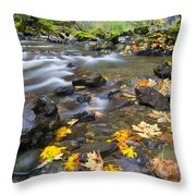 Scattered About Throw Pillow