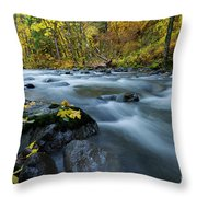Scattered Along The Way Throw Pillow