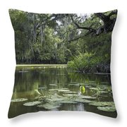 Scattered Sun On Blind River Throw Pillow