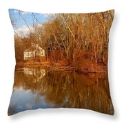 Scene In The Forest - Allaire State Park Throw Pillow