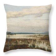 Scene Of Chiemsee, Moor Landscape Throw Pillow