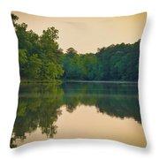Scene Serene Throw Pillow