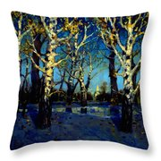 Scenery After Rain Throw Pillow