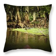 Scenes From A Kayak, No. 15 Throw Pillow