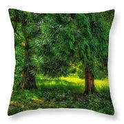 Scenes From An English Garden Throw Pillow