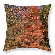 Scenic Autumn  Throw Pillow