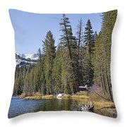 Scenic Beauty Throw Pillow