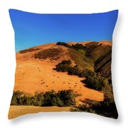 Scenic California Throw Pillow
