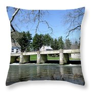 Scenic Day Throw Pillow