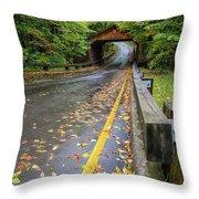 Scenic Drive 1 Throw Pillow
